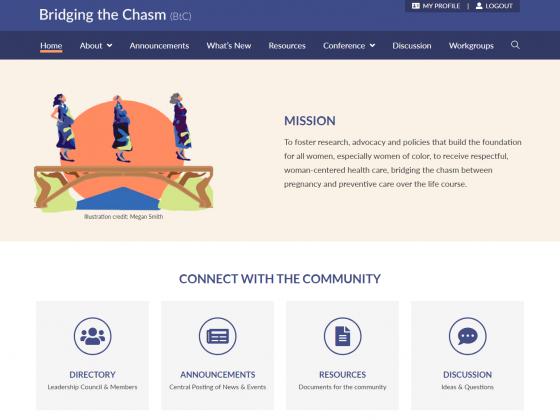 Bridging the Chasm